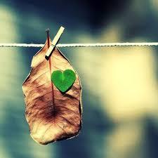 Ngày-nữa-để-yêu-thương